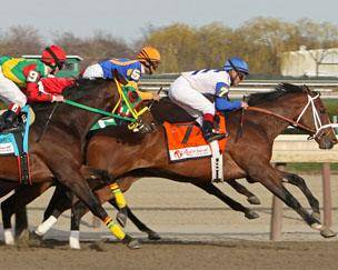 Horse Racing Tickets Horse Racing Packages Primesport
